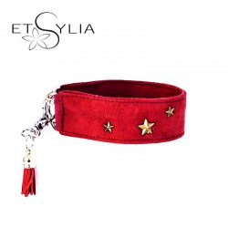 Collier pour chien  Red Star