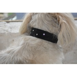 Collier pour chien strass...